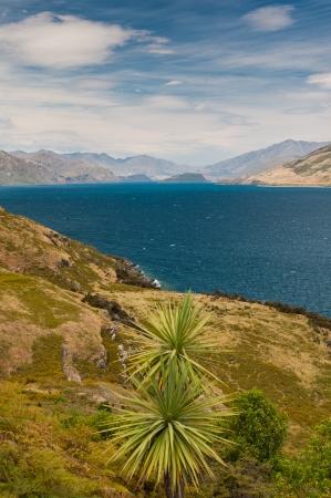Beautiful Wakatipu Lake, New Zealand photo