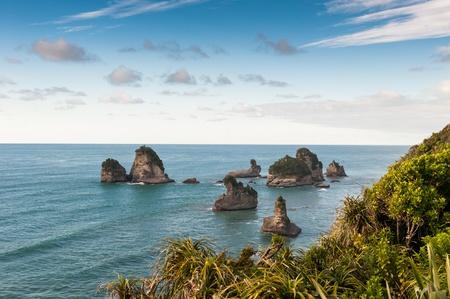 new zealand beach: Beautiful New Zealand ocean