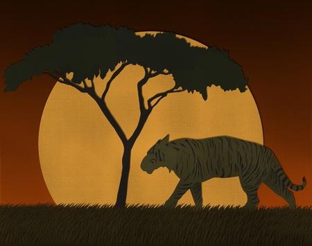 silueta tigre: Escena Puesta de sol en África safari hecho de papel reciclado Foto de archivo