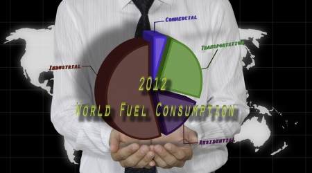 Hand holding pie chart of fuel consumption 2012 photo