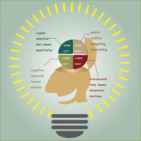 of Brain function in light bulb Vector
