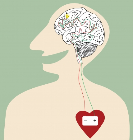 conduit: Vector cartoon of Battery connection between Heart and Brain Illustration