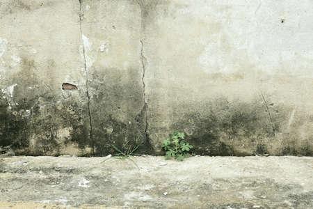 white: Red brick wall Stock Photo