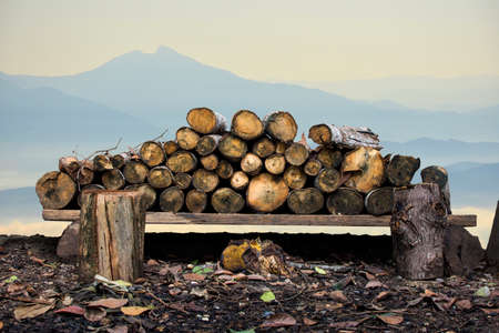 sawn: Natural wooden logs stacked. pile of wood logs on nature background with clipping path.