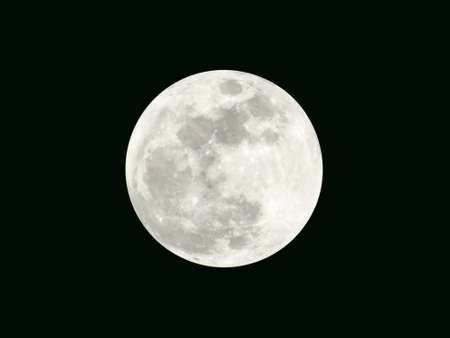 The full moon on the black background 版權商用圖片
