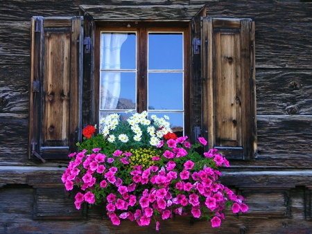 Flowers on the window of a wooden house photo