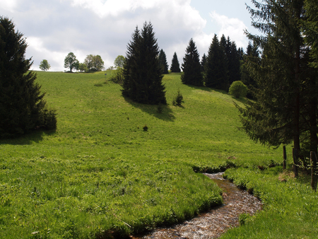erzgebirge: Mountain stream in the Ore Mountains Stock Photo