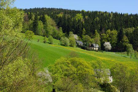 erzgebirge: erzgebirge freshgreen in Muldental Stock Photo