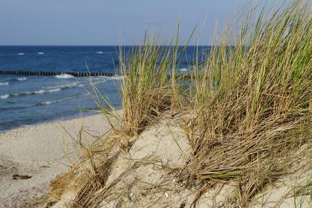 mit: Sandstrand mit D?nen und Ostsee  Sandstrand with dunes and Baltic Sea Stock Photo