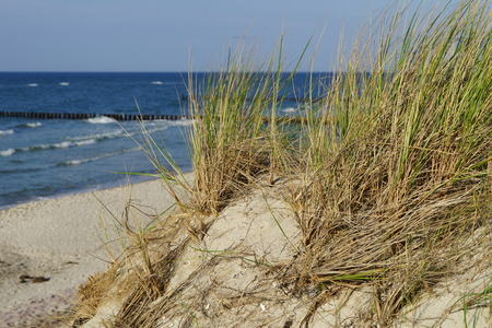 Sandstrand mit D?nen und Ostsee  Sandstrand with dunes and Baltic Sea Stock Photo