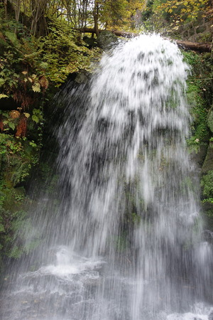 Amsel waterfall in the forest.