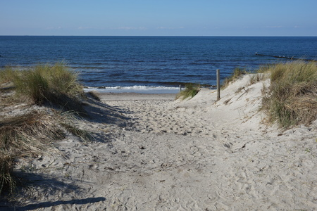 Dune crossing at Ahrenshoop Stock Photo