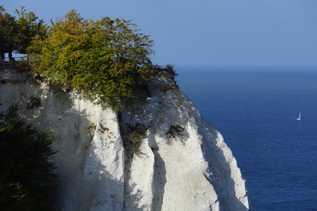 Chalk cliffs on the island of Rügen