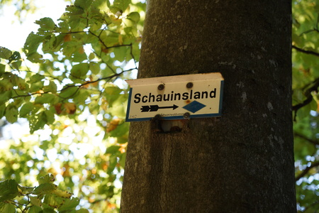 Signpost on the tree Stock Photo