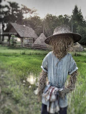 espantapajaros: Espantapájaros en la granja Foto de archivo