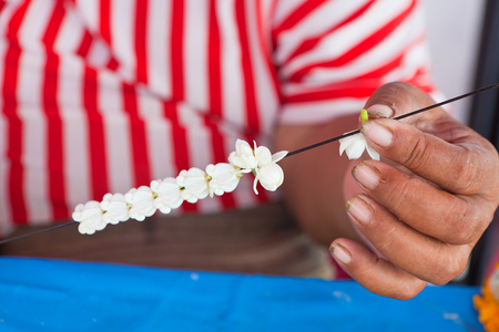 malai: making jasmine garland that called  Malai in Thai