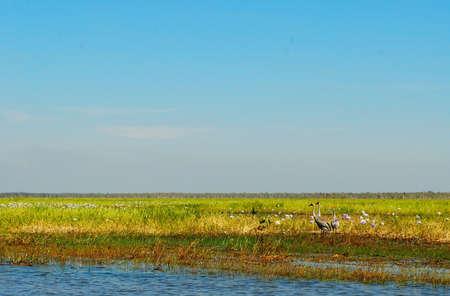 Kakadu National Park, Australia photo