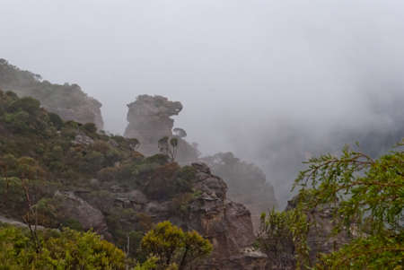 Dense fog at Blue Mountains National Park, Sydney Stock Photo - 16727467
