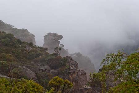 Dense fog at Blue Mountains National Park, Sydney Stock Photo - 16727467