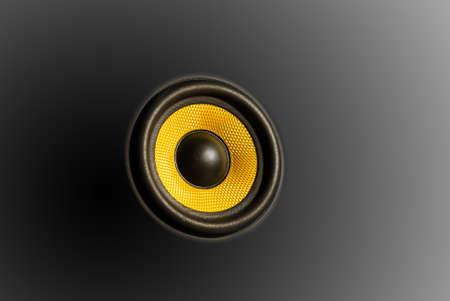 tweeter: tweeter for hi-fi audio