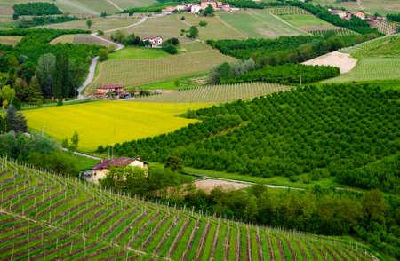 Le Langhe, Pi?mont, Italie