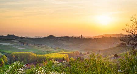 Le Langhe, Barbaresco (Piemonte, Italy)
