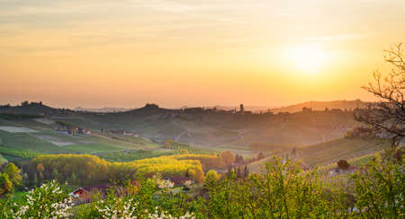 piedmont: Le Langhe, Barbaresco (Piemonte, Italy)