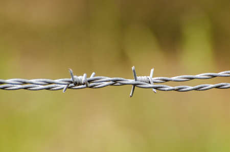 barbed wire: Barbed wire close-up Stock Photo