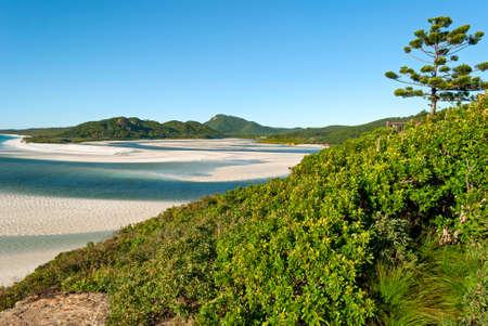 whitehaven beach: Whitsunday Islands Queensland Australia
