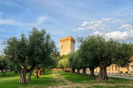 fortezza: Castiglione del Lago (Umbria) Fortezza