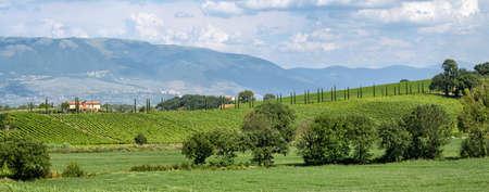 bevagna: Umbria (Italy) landscape near Bevagna