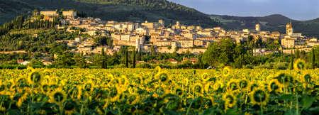 spello: Spello (Umbria Italy)