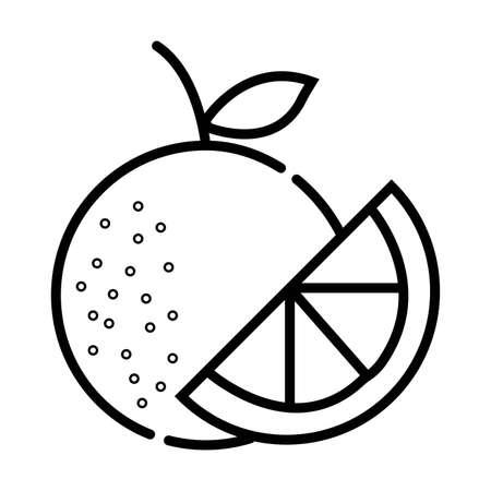 Orange fruit with leaf and slice Illustration