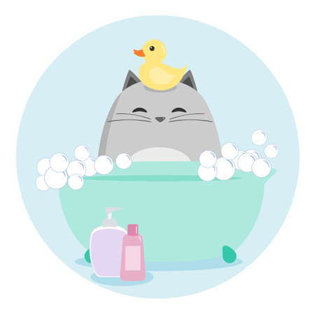 cat grooming: Cat Having a Bath Illustration