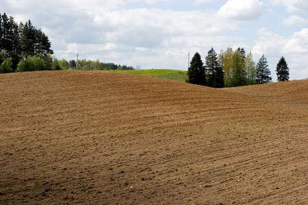 arable: Arable field