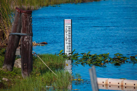 depth gauge: Water level metering gauge in Everglades swamp, Florida, USA