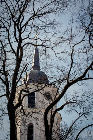 Belfry of Vilnius Cathedral behind the branches of leafless tree