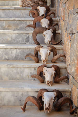 Steps decorated with sheep skulls at Crete island, Greece