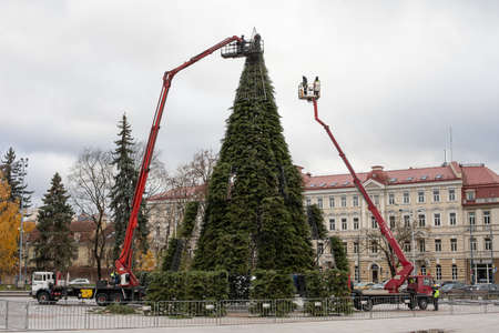 Vilnius, Lithuania - November 20, 2020: The main city christmas tree preparation is in progress. Cathedral Square in Vilnius, Lithuania. Editorial