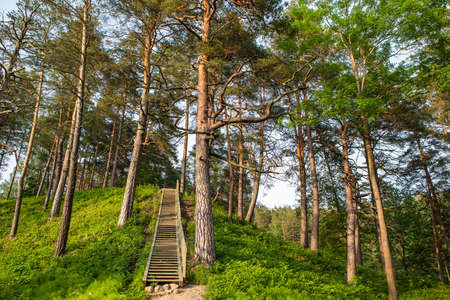 The Hill Fort of Naujoji Reva in Silenai cognitive park near Vilnius, Lithuania. This touristic nature trail is a part of Neris regional park. Stock Photo