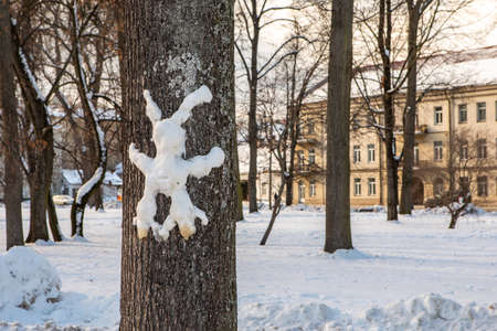 Hare from snow on a tree trunk in a city park in winter