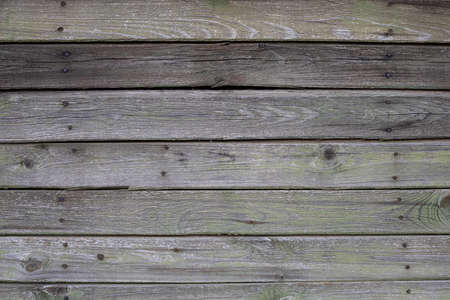Aged green wooden planks pattern with nails Zdjęcie Seryjne