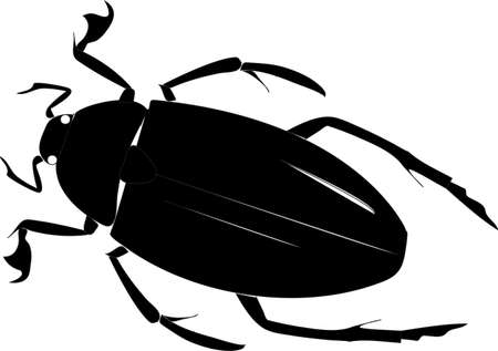 disgust: Black schematic beetle on a white background Illustration