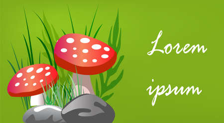 Amanita on a green background. Banner for the site. Иллюстрация
