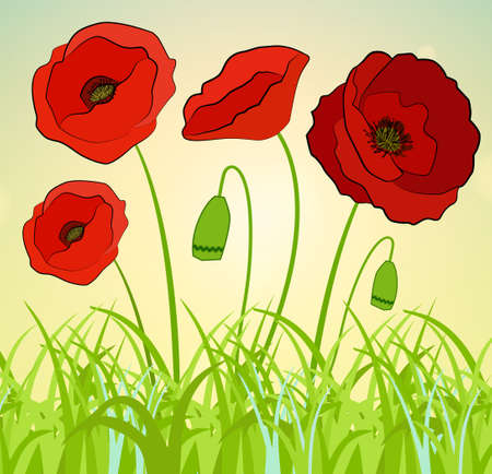 Beautiful abstract background with red poppies flowers.