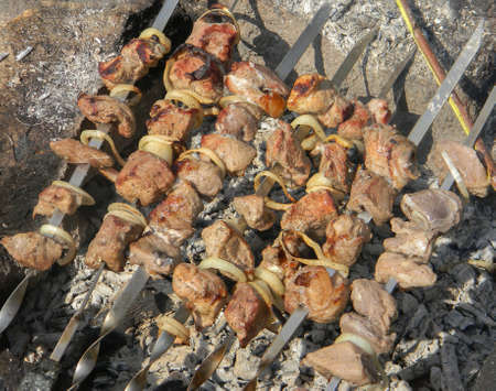 Barbecue skewers meat kebabs with onions.Picnic in nature.