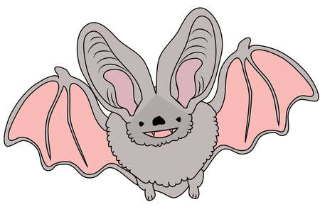 Cute bat on a white background. Cartoon character. Vector illustration Vectores