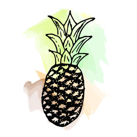 Imitation of watercolor paint. Bright and juicy pineapple illustration, on a white background. eps 10 Vectores