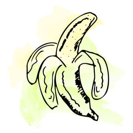 Imitation of watercolor paint. Bright and juicy banana illustration, on a white background. eps 10