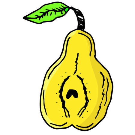 Bright and juicy illustration of a pear on a white background. eps 10